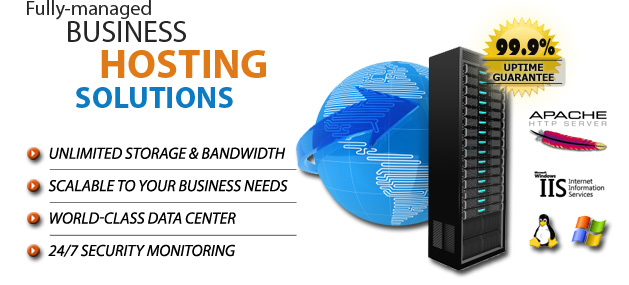 Managed Business Hosting Plans